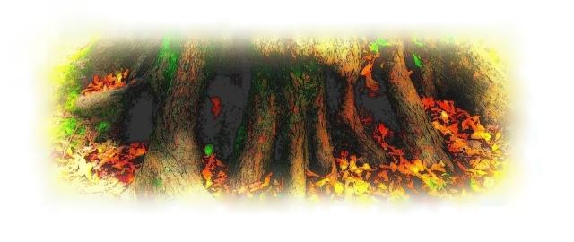 hojas de otoño-001